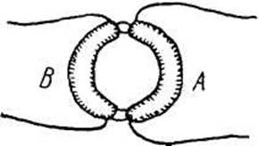 Життя і творчість Майкла Фарадея
